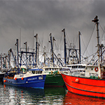 Future fisheries can expect $10-billion revenue loss due to climate change