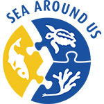 Top 10 Ocean Conservation Wins of 2016