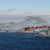 Antarctica's biodiversity not doing as well as hoped