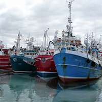 Fishing fleets travelling further to catch fewer fish