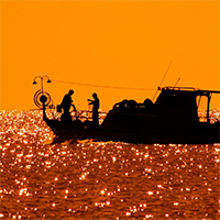Subsidies promote overfishing and hurt small-scale fishers worldwide