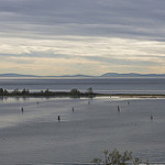 Better policies could net more fish for Indigenous and coastal communities