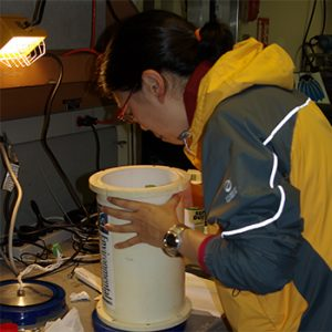 Using sound to unravel how animal behavior in complex environments