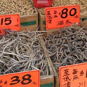 Despite export bans global seahorse trade continues