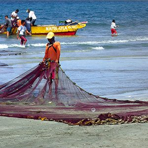 Ensuring individual transferable quotas benefit fisheries and the environment
