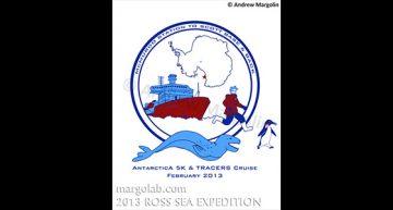 Andrew Margolin – Antarctica 5K T-shirt Design