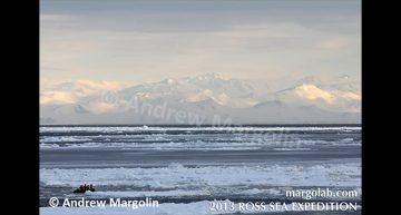 Andrew Margolin – People on Ross Sea