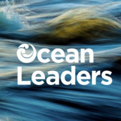 PROFILE: Ocean Leaders step outside the lab to connect with communities and solve ocean problems
