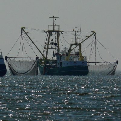 China and the E.U. aren't the only ones to blame for harmful fisheries subsidies