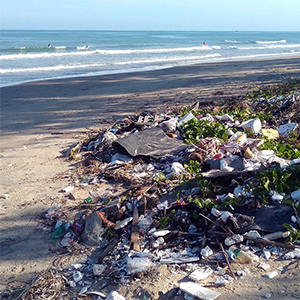 """PROFILE: Investigating ocean pollution to """"provide solutions, not just answers to questions"""""""