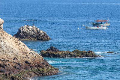 Artisan fishers near El Fallarón de San Ignacio Island