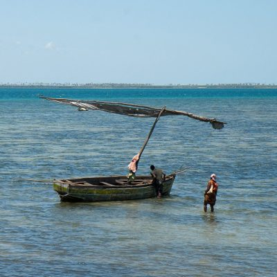 As fishing effort grows, catches decline in the Mozambique Channel region
